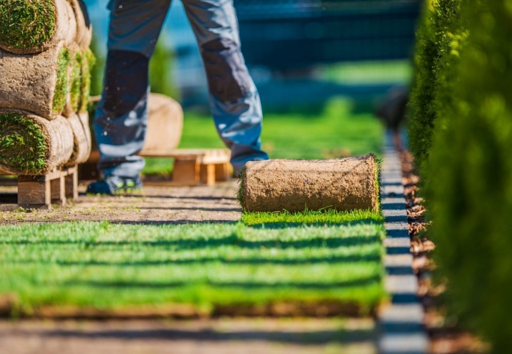 This is an image for Landscaping Cranbourne